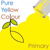 Pure Yellow Colour - Primary